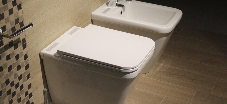 HEALTH WARNING: DIY Toilet Hygiene Spray Hose and Bidet Installation
